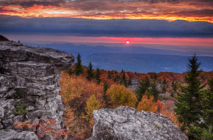 Dolly Sods Wilderness Attraction